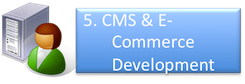 CMS & E-Commerce Development | CMS Work Flow | Crony Beuty | Appstronic.com | CMS, E-Commerce, Video, Multimedia Solution Provider, Puchong, Melaka Selangor